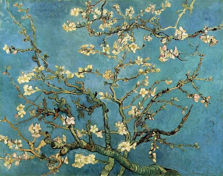 almond_blossom