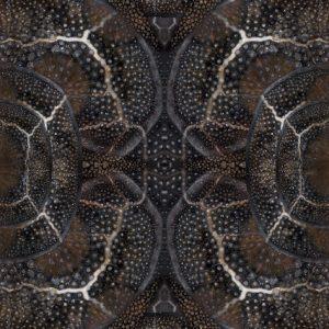 Web_Moooi-Carpets-Blooming-Seadragon-2018